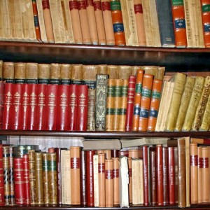 asasve_clipart03_biblioteca